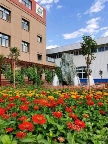 新疆绿巨人视频